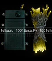 Battery string light - 100 LED