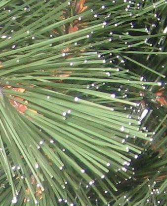Иголки на искусственной елки (увеличенное изображение)